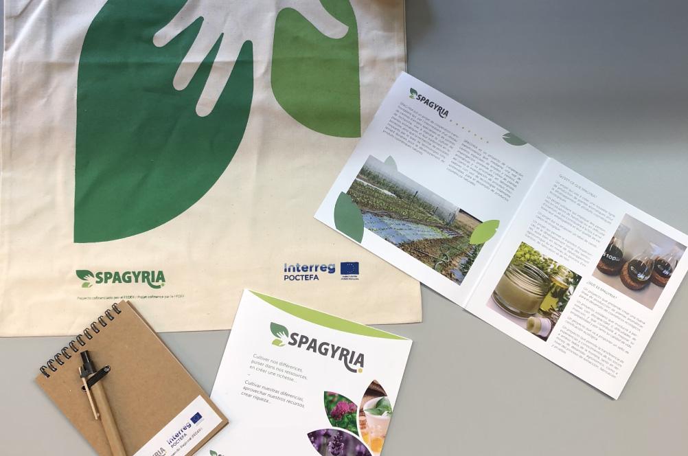 Merchandising Proyecto SPAGYRIA